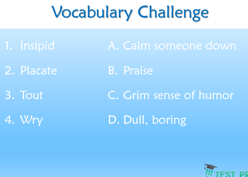 Vocabulary Challenge